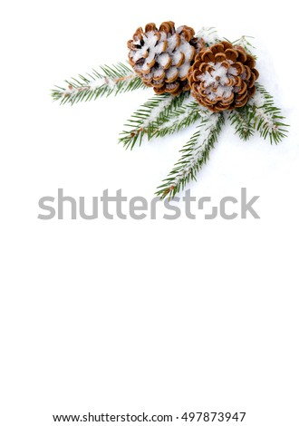Christmas decoration. Cones pine and branch christmas tree on snow on white background with space for text. Flat lay