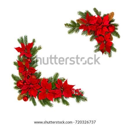 Beautiful christmas poinsettia star stock images royalty for Poinsettia christmas tree frame