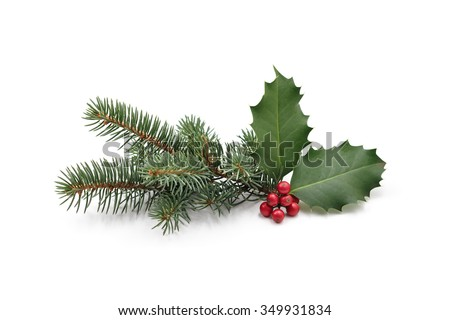 Christmas decoration of holly berry and pine tree - stock photo
