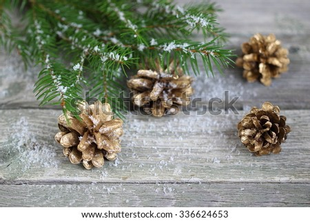 Christmas decoration with pine cones and  fir branches