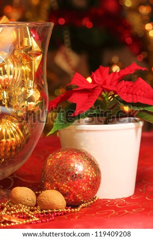 Christmas decoration with poinsettia flower - stock photo
