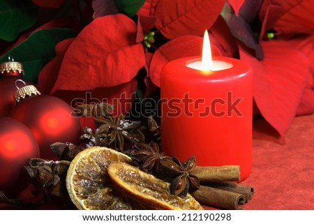 Christmas decoration with red candle and christmas flower - stock photo