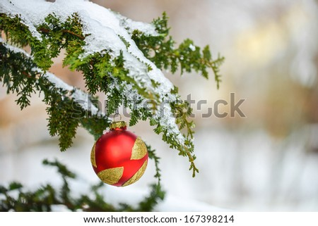 Christmas decoration with snow and branch of Christmas tree - stock photo