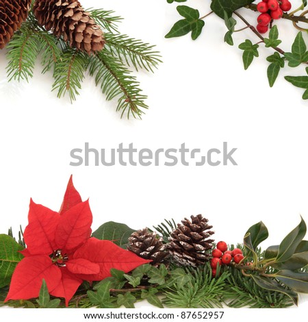 Christmas decorative border of poinsettia flower, holly, ivy, pine cones and spruce fir leaf sprig isolated over white background. - stock photo