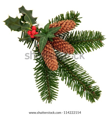 Christmas decorative flora arrangement of natural holly with red berry cluster, ivy and spruce leaf sprigs and  pine cones over white background. - stock photo