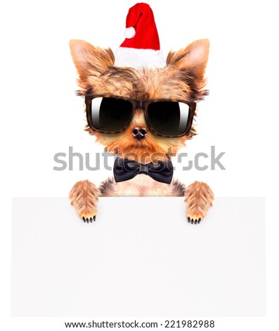 christmas dog as santa holding white paper banner