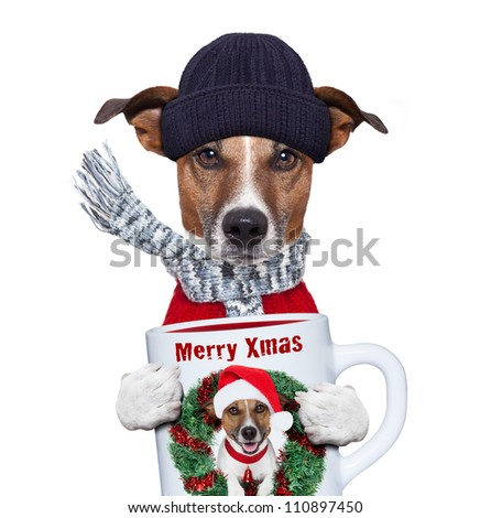 christmas dog with cup and scarf - stock photo