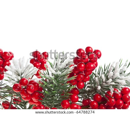 Christmas fir branch with red berries on white background - stock photo
