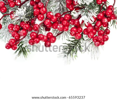 Christmas fir frame with red berries on white background - stock photo
