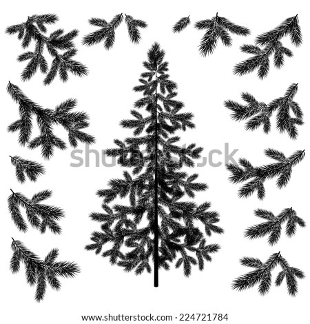 Christmas fir tree and branches black silhouettes set isolated on white background. - stock photo