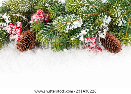 Christmas fir tree branch with holly berry over snow - stock photo