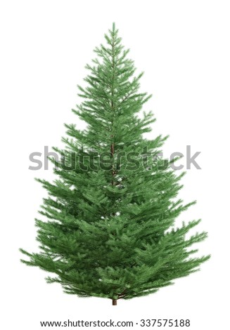 Christmas fir tree isolated over white 3d rendering - stock photo