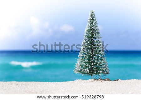 Christmas fir tree on sandy beach. New year celebration