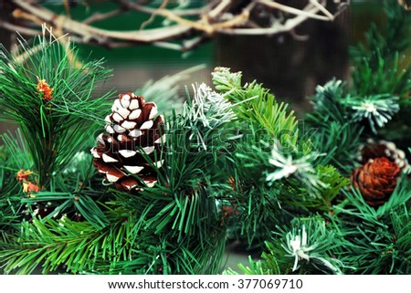 Christmas fir tree with cone closeup