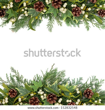 Christmas floral background border with mistletoe, ivy, pine cones and winter greenery over white. - stock photo