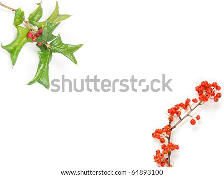 Christmas framework with holly berry isolated on white - stock photo