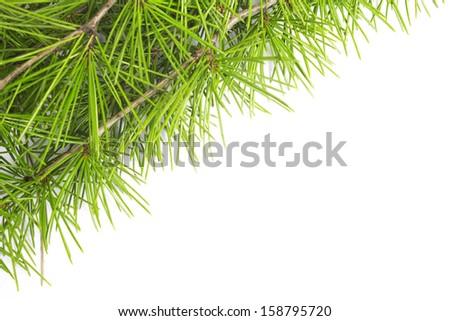 christmas garland isolated on white background - stock photo