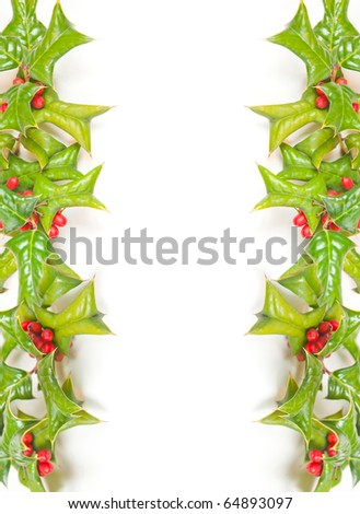 Christmas green framework and holly berry isolated on white background - stock photo