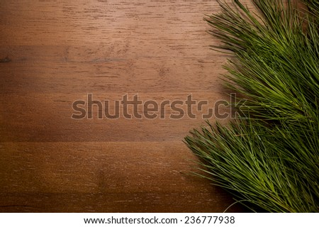 Christmas greenery on wood background - right side - stock photo