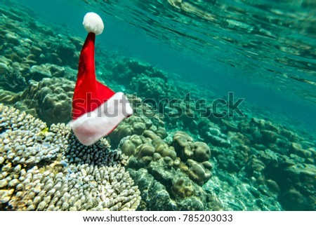 Christmas hat is underwater (he did exist)