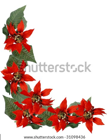 Christmas holiday border frame of red poinsettia flowers and green leaves isolated on white. Vertical orientation with lower left corner design leaving copy space center and upper right. - stock photo