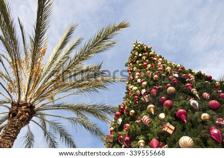Christmas in the Tropics - stock photo