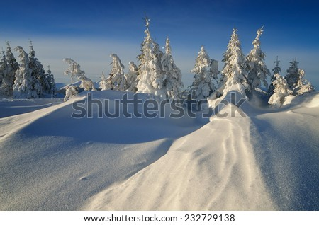 Christmas landscape. Winter Wonderland. Snow-covered trees in a mountain forest - stock photo