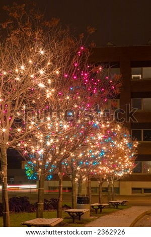 Christmas Lights at night lighting up the night. - stock photo