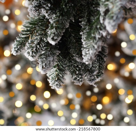 christmas lights hanging in a tree  - stock photo