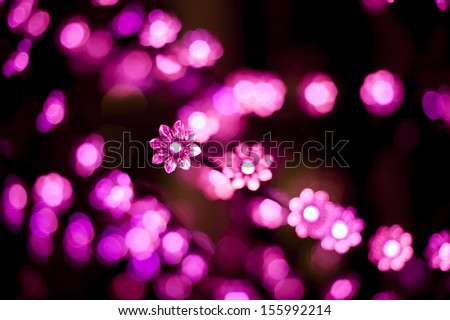 Christmas lights in shape of a flower - stock photo