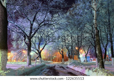 Christmas magic park, forest with lanterns, magic forest