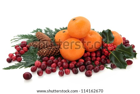 Christmas mandarin orange and cranberry fruit with holly, pine cones and cedar cypress leaf sprigs over white background.
