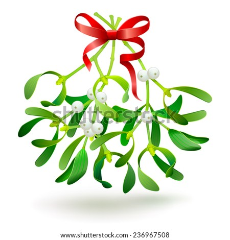 Christmas mistletoe with a red bow - stock photo