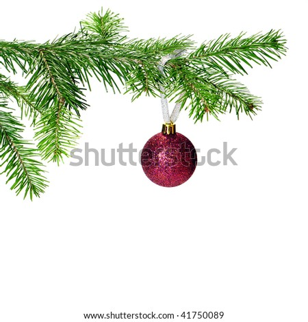 Christmas ornament hanging on pine tree over white background