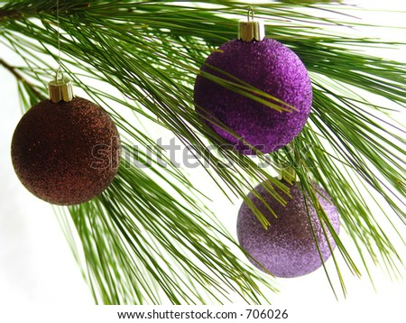 Christmas ornaments on pine bough - stock photo