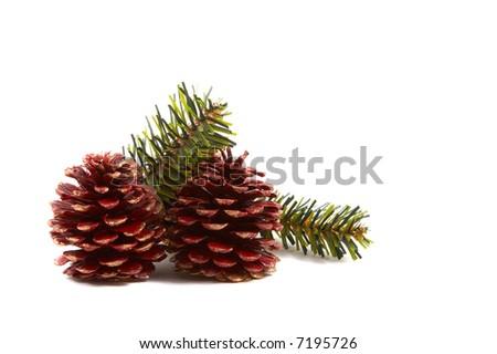 Christmas pine cones, pine leaves isolated on white background. Horizontal, landscape orientation. - stock photo