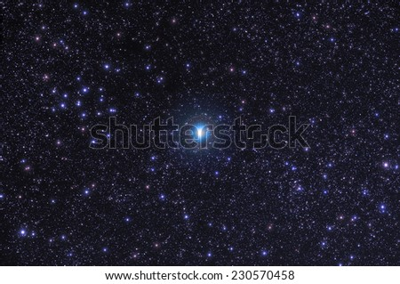 Christmas star.  - stock photo