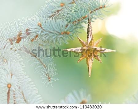 Christmas star on Christmas tree - Merry Christmas and Happy New Year - stock photo