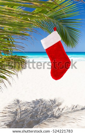 Christmas stocking hanging on coconut palm tree leaf at a beach with turquoise water
