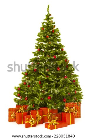 Christmas tree and red present gift box, Xmas fir tree  isolated white background - stock photo