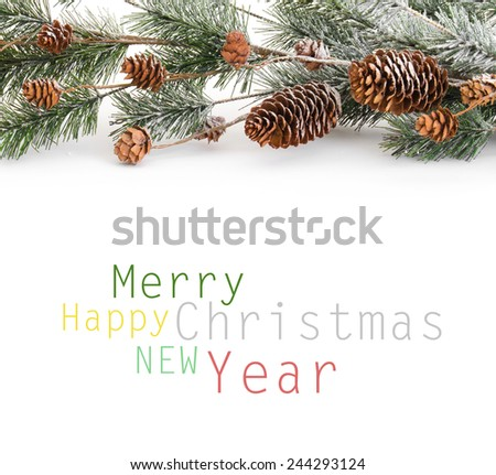 Christmas tree branch - stock photo
