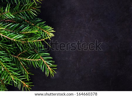 Christmas Tree Branch on Blackboard with copy space for greeting text. Christmas card with decoration . - stock photo