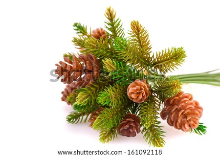 Christmas tree branch with cones isolated on white background. - stock photo