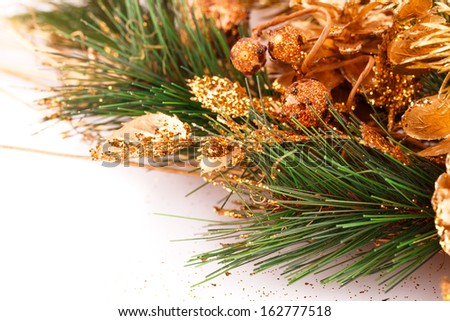 Christmas tree branch with cones on white background.