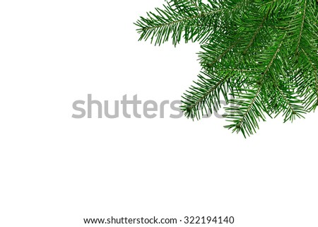 Christmas tree branches isolated over white. Christmas and New Year festive card - stock photo