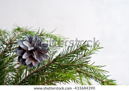 Christmas tree branches with pine cone, on white background. Free space for text
