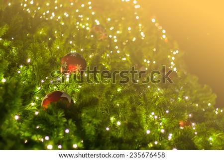 christmas tree, Christmas background   - stock photo
