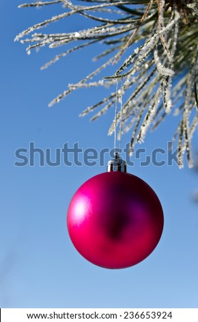 Christmas-tree decoration on a pine tree covered with hoarfrost, shallow depth of field. - stock photo