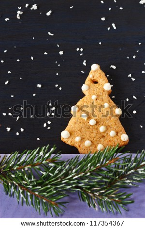 Christmas tree gingerbread cookie and spruce branch with snow.