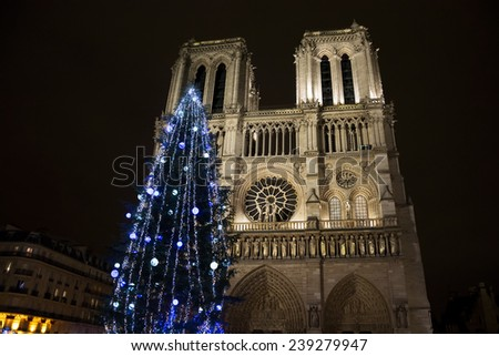 Christmas tree in front of the Notre Dame cathedral in the evening. Paris, France.